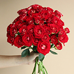 Salsa Red Orange Wholesale Rose Bunch in a hand