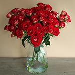 Salsa Red Orange Wholesale Roses In a vase