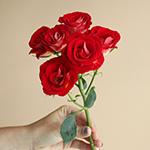 Salsa Red Orange Rose Stem