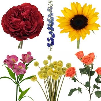 Sangria Festival Fresh DIY Flower Kit Bunch