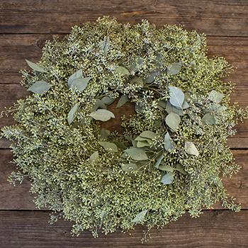 Prime Day Fresh Seeded Eucalyptus Wreaths