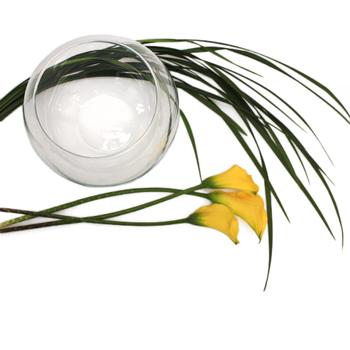 Simply Modern Calla Lily Flower Kit Flatlay