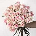 Light pink rose bulk wedding flowers