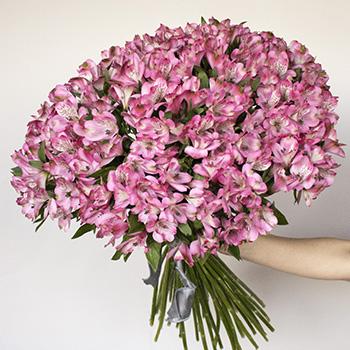 Farm Fresh Pink Alstroemeria Spiral Arrangement