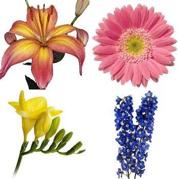 Spring Flowers Lilies, Gerberas, Freesia, and Delphinium DIY Flower Kit Bunch