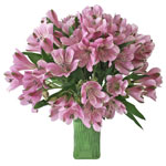 Stratus Pinky Lavender alstroemeria Wholesale Flower In a vase