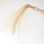 Dried straw palm wholesale flowers