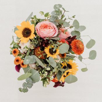 Rustic Sunflowers Minimony Wedding Collection