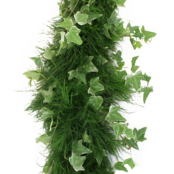 Tree Fern and Ivy Garland