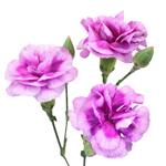 Trendy Mini Carnation Stem