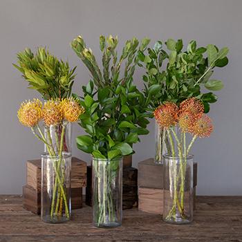 Mango Orange Sorbet DIY Tropical Flowers