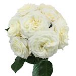 True White Garden Wholesale Roses In a vase