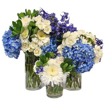 Varsity Blues DIY Flower Kit In a Vase