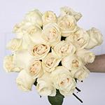 Vendela Ivory Wholesale Rose Bunch
