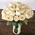 Vendela Ivory Rose Bunch