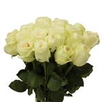 Vintage Promenade Garden Wholesale Roses In a vase