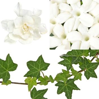 Wedding Flower Accent Green Ivy DIY Flower Kit Bunch