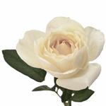 Whipped Frosting Garden Rose Stem
