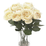 Whipped Frosting Garden Wholesale Roses In a vase