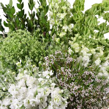 White Bliss Combo DIY Flower Kit Up Close