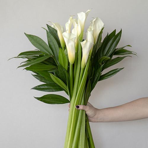 White Classic Calla Lily Centerpieces