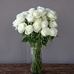 Peace Out Fresh White Roses