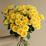 Yellow Babe Wholesale Rose Bunch in a hand