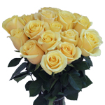 Wholesale Roses In a vase
