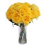 Yellow Garden Rose Toulousse Lautrec sold for wedding bouquets