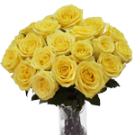 Yellow Stardust Wholesale Roses in a Vase